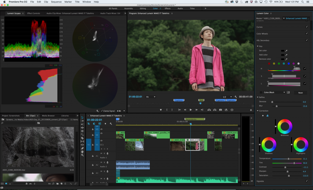 Adobe Premiere Pro color adjustment