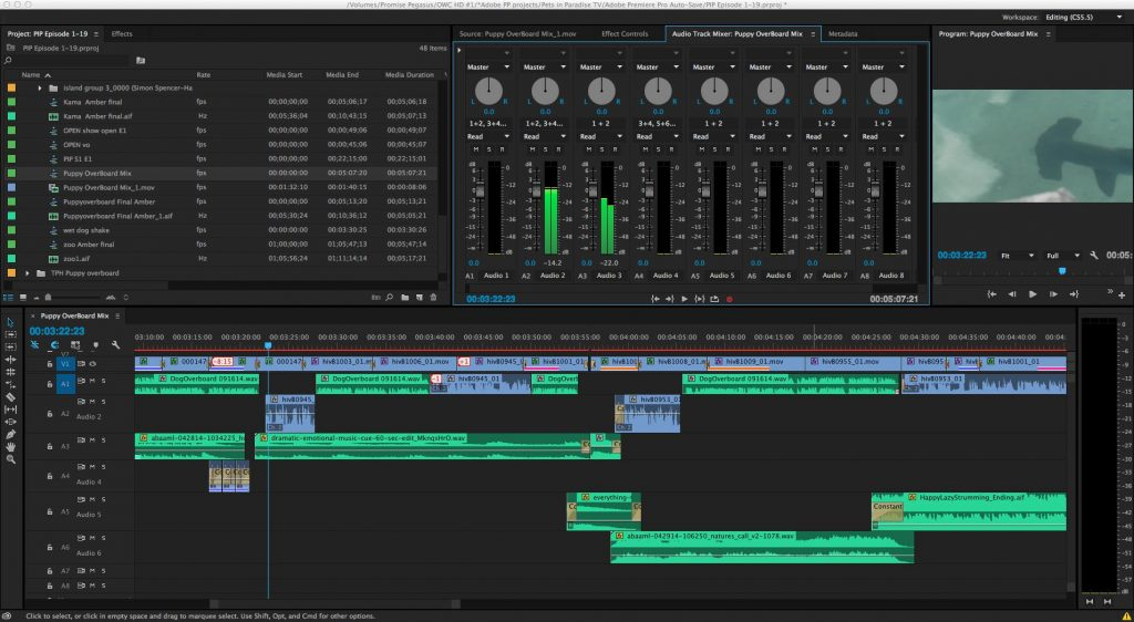 adobe premiere pro audio editing